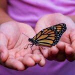 La connaissance métaphysique libère les ailes de l'esprit